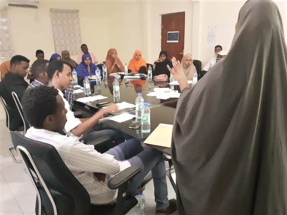 Legal Drafting Workshop sparks exciting discussions in Garowe